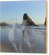 Equine Beach II Wood Print
