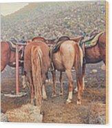 Equine Gossip - Haleakala Wood Print