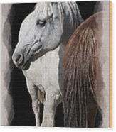 Equine Horse Head And Tail Wood Print by Daniel Hagerman