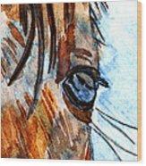 Equine Reflection Wood Print