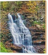 Erie Falls Wood Print