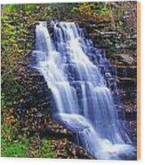 Erie Falls Vertical Panoramic Wood Print