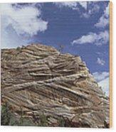 Eroded Sandstone Zion Np Utah Wood Print