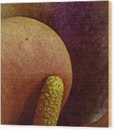 Erotica Wood Print