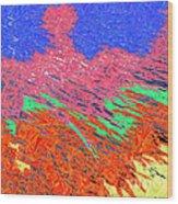 Erupting Lava Meets The Sea Wood Print by Joseph Baril