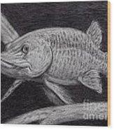 Esox Masquinongy Wood Print by Larry Green
