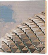 Esplanade Theatres Roof 01 Wood Print