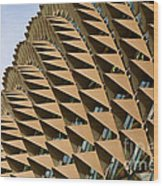Esplanade Theatres Roof 11 Wood Print