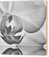 Essence Wood Print