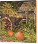 Essence Of Autumn  Wood Print by Doug Kreuger