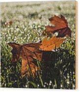 Essence Of Autumn Wood Print