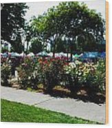 Esther Short Park Rose Gardens Wood Print
