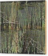 Estuaries Edge Wood Print