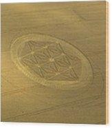 Etchilhampton Crop Formation 2011 Wood Print