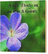 Eternity's Seed Wood Print