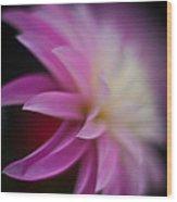 Ethereal Dahlia Wood Print