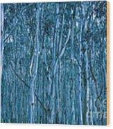 Eucalyptus Forest Wood Print by Frank Tschakert