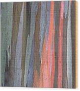 Eucalyptus Tree Bark Wood Print