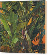 Eugene And Evans' Banana Tree Wood Print