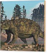 Euoplocephalus Dinosaur Grazing Wood Print