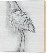 Eurasian Spoonbill - Platalealeucorodia Wood Print