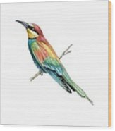 European Bee-eater, Artwork Wood Print