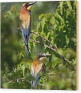 European Bee-eater Wood Print