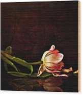 Even Though A Flower Fades Wood Print