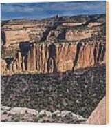 Evening At Colorado National Monument Wood Print