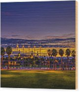 Evening At The Park Wood Print