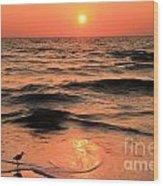 Evening Beach Stroll Wood Print
