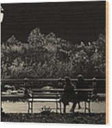 Evening Bench Warmers Wood Print