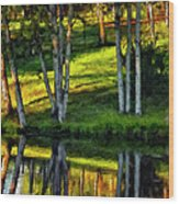 Evening Birches Painted Wood Print