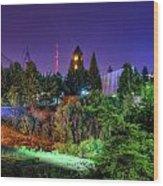 Evening Colors Wood Print by Dan Quam
