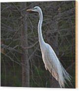 Evening Egret 2 Vertical Wood Print