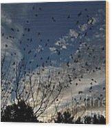 Evening Flock Wood Print
