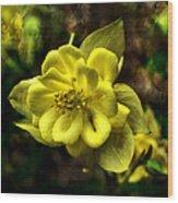 Evening Floral Wood Print