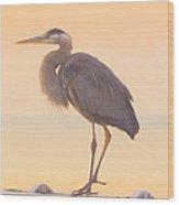 Evening Heron - Colorful Pastel Wood Print