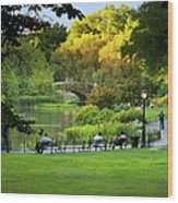 Evening In Central Park Wood Print