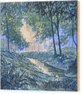 Evening In Wykeham Forest Wood Print