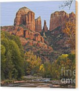 Evening Light On Cathedral Rock Wood Print