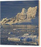 Evening Light On Peaks Paradise Bay Wood Print