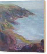 Evening Light On The Oregon Coast - Original Impressionist Oil Painting - Plein Air Wood Print