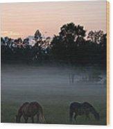 Evening Mist Wood Print