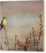 Evening Mocking Bird Wood Print