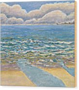 Evening North Myrtle Beach Wood Print