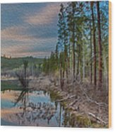 Evening On The Banks Of A Beaver Pond Wood Print by Omaste Witkowski