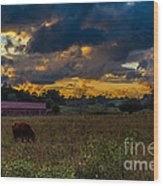 Evening On The Farm One Wood Print