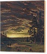 Evening On The Prairie Wood Print