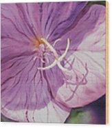 Evening Primrose Flower Wood Print